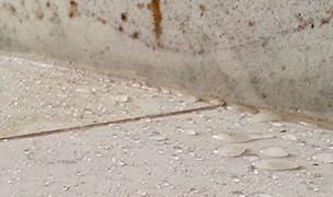 Tile & Grout Sealing